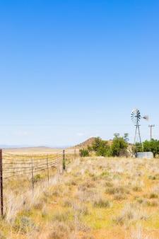 Vertikale aufnahme des trockenen feldes auf dem hintergrund des blauen himmels