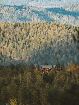 Vertikale aufnahme einer hütte in einem wald, umgeben von vielen grünen bäumen in norwegen