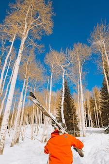 Vertikale aufnahme einer person, die himmel trägt, die einen schneebedeckten hügel nahe den bäumen unter einem blauen himmel hinaufgehen