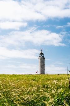 Vertikale aufnahme eines grasfeldes mit einem leuchtturm in der ferne unter einem bewölkten himmel in frankreich