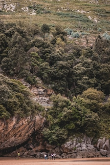 Vertikale aufnahme eines hohen hügels, der mit bäumen und pflanzen bedeckt ist