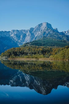 Vertikale aufnahme eines klaren meeres in den bergen mit einem grünen wald