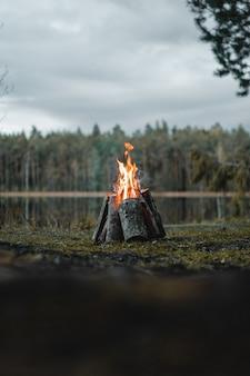 Vertikale aufnahme eines lagerfeuers, umgeben von grün unter einem bewölkten himmel am morgen