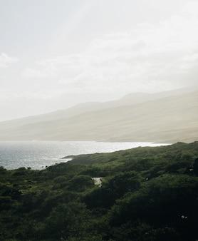 Vertikale aufnahme eines meeres, umgeben von bergen, die mit bäumen bedeckt sind