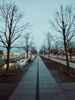 Vertikale aufnahme eines parks am flussufer in der stadt während der abendzeit