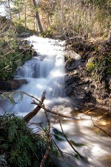 Vertikale aufnahme eines schnell fließenden flusses, umgeben von felsen und bäumen in einem wald