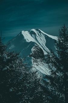 Vertikale aufnahme eines schönen schneebedeckten bergrückens und eines von alpinen bäumen eingerahmten gipfels