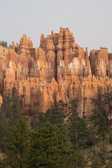 Vertikale aufnahme von badlands, umgeben von viel grün im bryce canyon national park in utah, usa