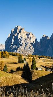 Vertikale aufnahme von bäumen und gebäuden auf hügeln mit bergen in der ferne in dolomit italien