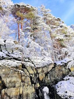 Vertikale aufnahme von felsen und bäumen bedeckt im schnee unter dem sonnenlicht und einem blauen himmel in norwegen