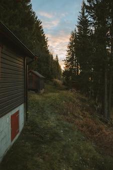 Vertikale aufnahme von holzhäusern auf einem hügel, umgeben von bäumen, die in norwegen gefangen genommen werden