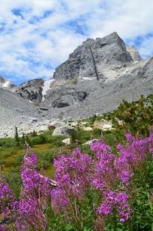 Vertikale aufnahme von middle teton im grand teton national park, wyoming wy