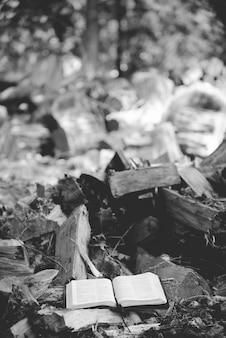 Vertikale graustufenaufnahme einer offenen bibel nahe gebrochenen bäumen auf dem boden