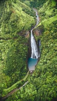 Vertikale hochwinkelaufnahme des wasserfalls unter dem wald, der in kauai, hawaii gefangen genommen wird