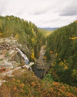 Vertikale hohe winkelaufnahme einer schönen landschaft mit vielen grünen bäumen und einem fluss in norwegen