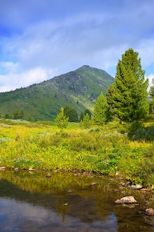 Vertikale landschaft mit bergen see