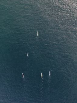 Vertikale luftaufnahme von menschen in kajakbooten, die in einem ruhigen klaren meerwasser paddeln