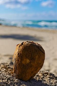 Vertikale nahaufnahmeaufnahme einer kokosnuss auf dem sand mit einem unscharfen hintergrund