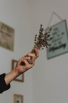 Vertikaler flachwinkelschuss einer person, die eine handvoll getrockneter pflanzen mit zeichnung an der wand hält