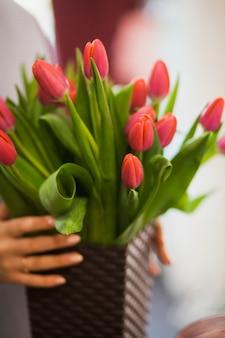 Vertikaler schuss der weiblichen hände, die korb der frischen tulpen des frühlings halten. frauenflorist am blumenmarkt in der urlaubsvorbereitung. blumenmusterkonzept