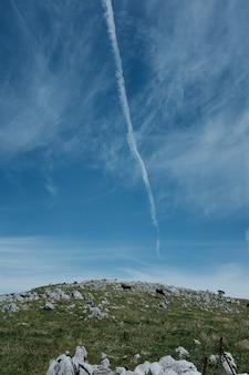 Vertikaler schuss einer kühe, die auf einem hügel grasen, der mit gras und felsen unter einem blauen himmel bedeckt ist