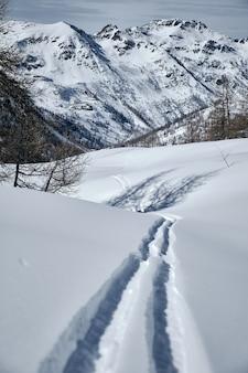 Vertikaler schuss eines bewaldeten berges, der im schnee in col de la lombarde - isola 2000 frankreich bedeckt wird