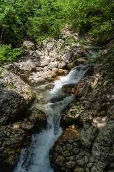 Vertikaler schuss eines schönen kleinen wasserfalls im park von triglav, slowenien tagsüber