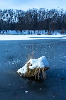 Vertikaler schuss eines stückes holz bedeckt mit schnee im gefrorenen see in maksimir, zagreb, kroatien