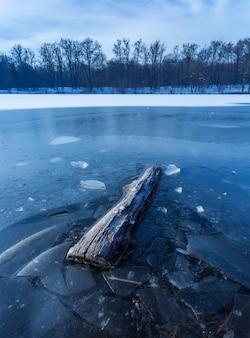 Vertikaler schuss eines stückes holz im gefrorenen see in maksimir, zagreb, kroatien