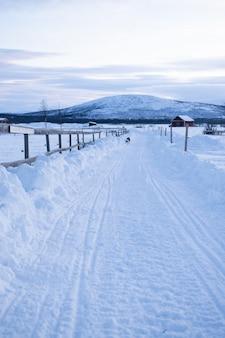 Vertikaler schuss eines weges mitten in schneebedeckten feldern mit einem hund in der ferne in schweden