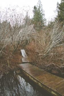 Vertikales bild einer holzbrücke auf dem see, umgeben von grün und büschen