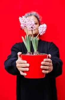 Vertikales foto der frau, die in schwarz gekleidet ist, hält einen roten blumentopf mit rosa hyazinthen auf einer roten wand