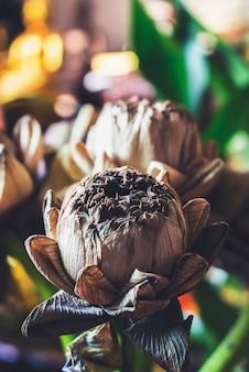 Verwelkter lotus