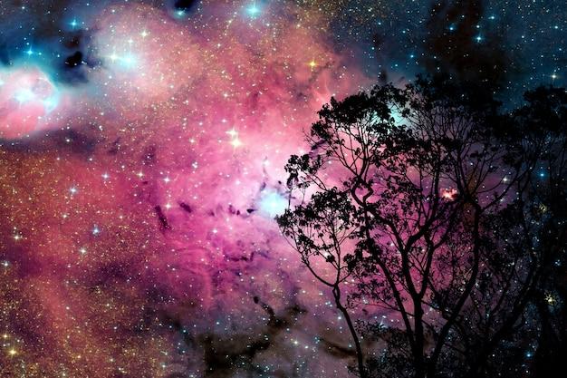Verwischen sie galaxiennebel zurück auf nachtwolkenhimmel auf baum