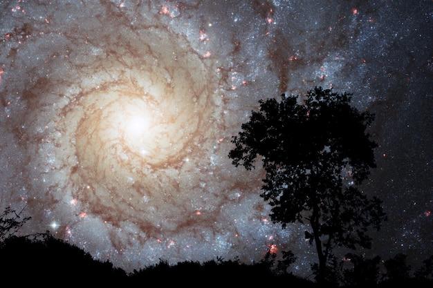 Verwischen sie sprial galaxie zurück auf nachtwolkensonnenunterganghimmel-schattenbildbaum