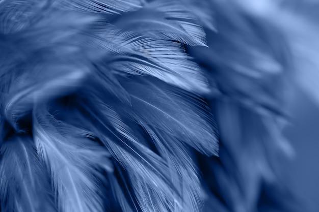 Verwischen sie styls und weiche farbe der hühnerfederbeschaffenheit für hintergrund
