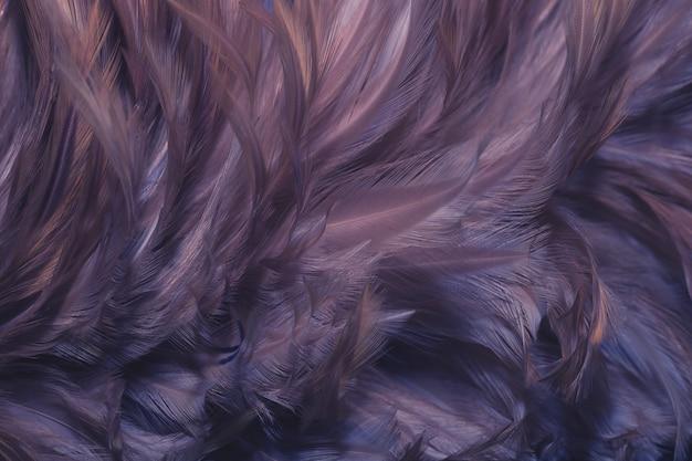 Verwischen sie vogelhühner-federbeschaffenheit für hintergrund, fantasie, abstrakte, weiche farbe des kunstdesigns.