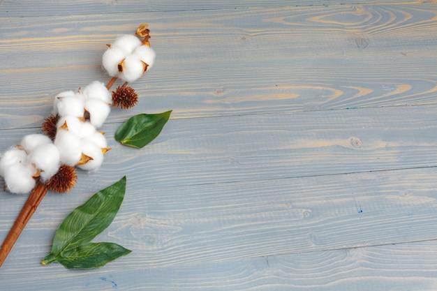 Verzweigen sie sich mit baumwollblumen auf hölzernem hintergrund