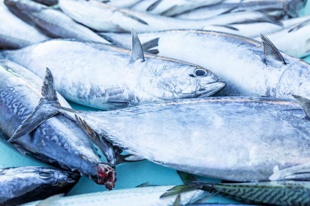 Viel frischer fisch auf dem markt. frischer fang. von oben betrachten. nahansicht.