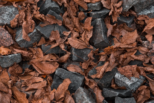 Viele bunte steine am ufer. rocky shore hintergrund