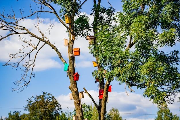 Viele bunte vogelhäuser auf einem baum. naturpflegekonzept