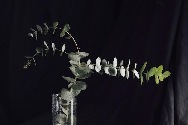 Viele grüne blätter auf zweigen im vase