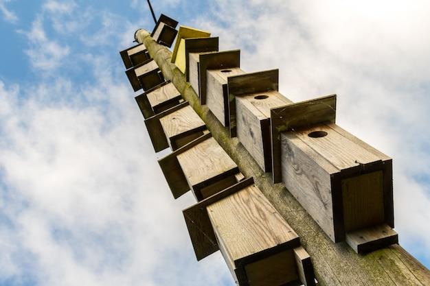 Viele holzkisten für vögel hängen an einem strommast