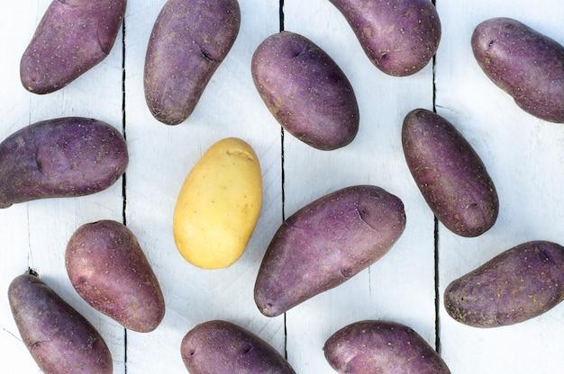 Viele lila kartoffeln und eine gelbe kartoffel auf einem weißen hintergrund