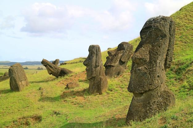 Viele moai-statuen zerstreuten sich auf der steigung des rano raraku-vulkans, der osterinsel, chile