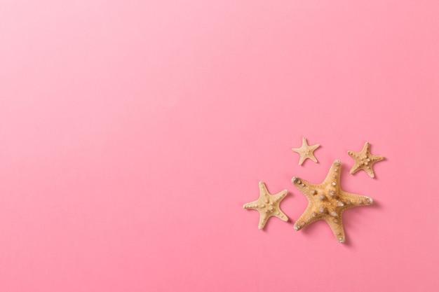 Viele muscheln und viele seesterne auf rosa hintergrund.