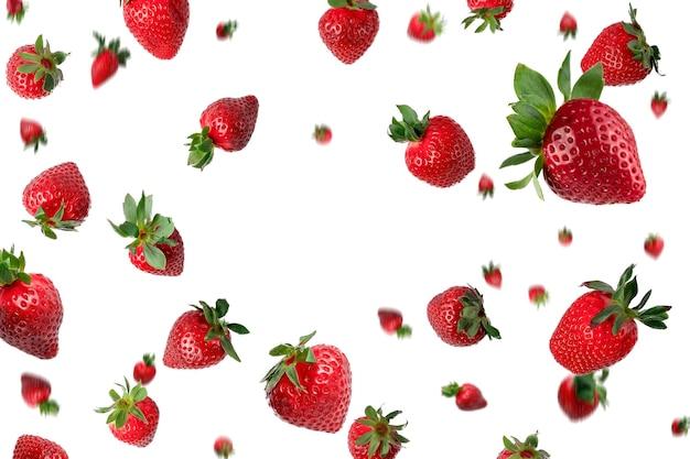 Viele rote frische ganze erdbeeren, die über einem weißen hintergrund mit kopienraum herunterfallen