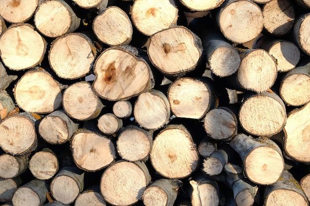Viele sägten brennholz vorbereitet und gestapelt in einem stapel als horizontale vorderansicht im hintergrund