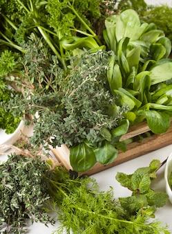 Vielzahl von frischen grünen organischen kräutern. gesundes essen konzept