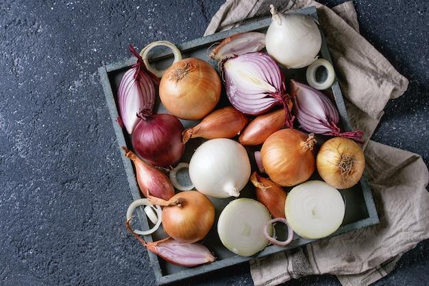 Vielzahl von ganzen und geschnittenen zwiebeln